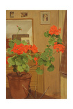 Ab/319 Geraniums in a Studio Corner, 1948-49 Giclee Print by Albert Williams