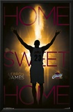 Cleveland Cavaliers - Lebron James 14 Posters