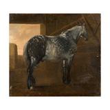 A Dapple Grey Horse Giclee Print by Aelbert Cuyp