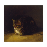 Study of a Cat, 1817 Giclee Print by Abraham Cooper