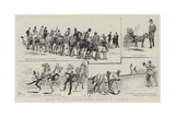 Show of the English Horse Society at Olympia Giclee Print by Alfred Chantrey Corbould