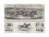Celebrated Racehorses and Jockeys Giclee Print by Alfred de Prades