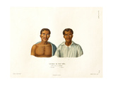 Unawolla and Taruri Giclee Print by Ambroise Tardieu