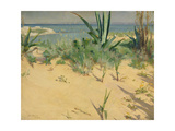 Sand Dunes, Tangier, 1892 Giclee Print by Alexander Mann