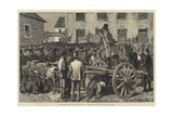 The Land League Agitation in Ireland, a Sheriff's Sale of Cattle, to Pay Rent Giclee Print by Aloysius O'Kelly