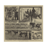 The Metropolitan Horse-Show Giclee Print by Alfred Chantrey Corbould