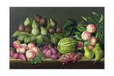 Figs, Melon and Gooseberries, 1998 Giclee Print by Amelia Kleiser