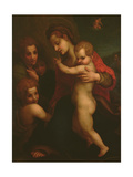 Madonna and Child, St. John and Two Angels Giclee Print by  Andrea del Sarto