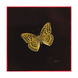 Silver Washed Fritillary Butterfly, 2000 Giclee Print by Amelia Kleiser