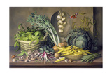 Garlic and Radishes and a Peacock Buttefly, 1997 Giclee Print by Amelia Kleiser