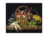 Basket of Mushrooms, 1997 Giclee Print by Amelia Kleiser