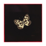 Marbled White Butterfly, 2000 Giclee Print by Amelia Kleiser