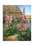 Cottage Garden with Hollyhocks, 1995 Giclee Print by Amelia Kleiser