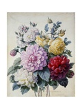 Bouquet of Flowers, Dahlias and Roses, Published C.1830-40 (Stipple Hand Coloured) Giclee Print by Camille de Chantereine