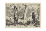 Great Hawk and Small Mormon Giclee Print by Arthur Boyd Houghton
