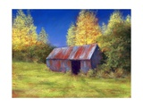 The Old Tin Shack, 2010 Giclee Print by Anthony Rule