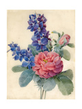 Flowers, Roses and Larkspur Giclee Print by Camile de Chanteraine
