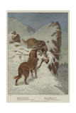 A Traveller, by the Faithful Hound Giclee Print by Basil Bradley