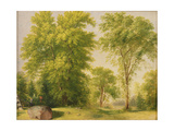 Study from Nature, Hoboken, New Jersey, C.1834 Giclee Print by Asher Brown Durand