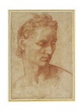 Head of a Woman Giclee Print by Baccio Bandinelli