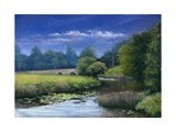 Quiet Flows the Stour, 2006 Giclee Print by Anthony Rule