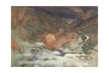 Highland Glen Giclee Print by Arthur Melville