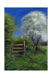 Springtime by the Stile, 2013 Giclee Print by Anthony Rule