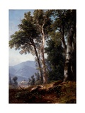 Woodland Landscape, C.1850 Giclee Print by Asher Brown Durand