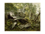 Study from Nature: Rocks and Trees, C.1856 Giclee Print by Asher Brown Durand