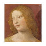 Head of a Young Woman Giclee Print by Bernardino Luini