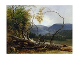 Study from Nature, Stratton Notch, Vermont, 1853 Giclee Print by Asher Brown Durand