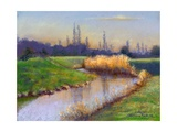 Winter Evening on the Clyst, 2003 Giclee Print by Anthony Rule