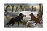 Wild Duck Hunting, 1880 Giclee Print by Basil Bradley