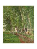 Undergrowth at Moret, 1902 Reproduction procédé giclée par Camille Pissarro