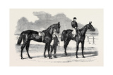 The Winners of the Derby and the Oaks Giclee Print by Benjamin Herring