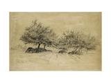 Recto: Chailly, C. 1859 Reproduction procédé giclée par Camille Pissarro