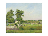 Cricket Match at Bedford Park, London, 1897 Reproduction procédé giclée par Camille Pissarro