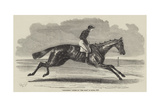 Songstress, Winner of The Oaks, at Epsom, 1852 Giclee Print by Benjamin Herring