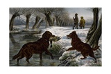 Wild Duck Hunting, 1880 Giclee Print by Basil Bradley