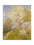 Apple Blossom at Dennemont, 1893 Giclee Print by Charles Edward Conder