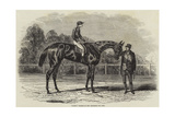 Nancy, Winner of the Goodwood Cup, 1851 Giclee Print by Benjamin Herring