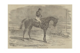 Andover, the Winner of the Derby, 1854 Giclee Print by Benjamin Herring
