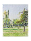 Study of the Orchard of the Artist's House at Eragny-Sur-Epte, C. 1890 Reproduction procédé giclée par Camille Pissarro
