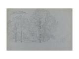 Study of Trees, with a Slight Study of a Barge, 1859 Reproduction procédé giclée par Camille Pissarro