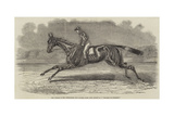 The Winner of the Newmarket July Stakes, Lord John Scott's BC Brother to Elthiron Giclee Print by Benjamin Herring