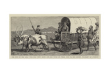 The End of the Zulu War Giclee Print by Charles Edwin Fripp