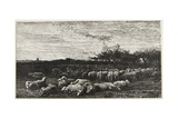 Le Grand Parc a Moutons, 1862 Giclee Print by Charles Francois Daubigny