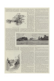 Eastwell Park Giclee Print by Charles Auguste Loye