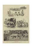 Round the World Yachting in the Ceylon, X, Ceylon Giclee Print by Charles Edwin Fripp