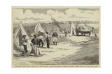 Sketches from South Africa, Hottentot Troops Pitching their Camp in the Peri Bush Giclee Print by Charles Edwin Fripp